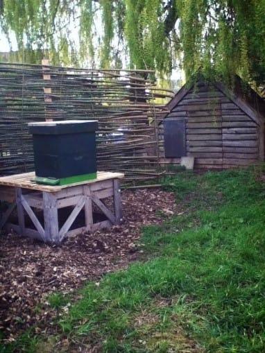 Verdeliet - bijenstal - eerste bijenvolk - foto 1 .jpg