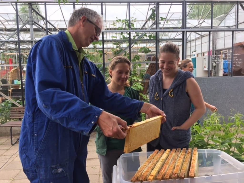 foto nieuwsbericht bijenwerkgroep.jpg